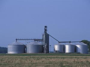 Silos and Field of Soybeans at Chino Farms, Maryland, USA by Jerry & Marcy Monkman