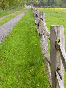 Split Rail Fence and Farm Road, Essex County, Ipswich, Massachusetts, USA by Jerry & Marcy Monkman