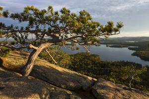 Squam Lake from West Rattlesnake Mountain, Holderness, New Hampshire by Jerry & Marcy Monkman