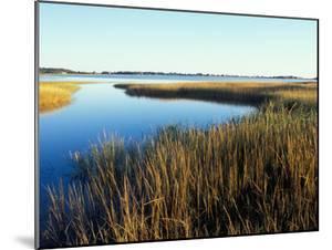 Tidal Creek Empties into Biddeford Pool, Anuszewski Property, Maine, USA by Jerry & Marcy Monkman