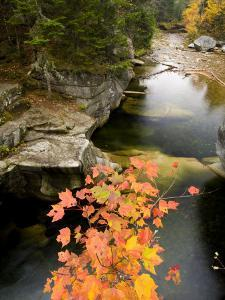 Upper Falls on the Ammonoosuc River, White Mountains, New Hampshire, USA by Jerry & Marcy Monkman