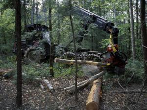 Valmet Forwarder, Green Certification, Logging, Maine, USA by Jerry & Marcy Monkman