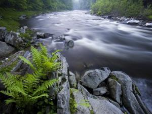 West Branch of the Westfield River, Chesterfield, Massachusetts, USA by Jerry & Marcy Monkman