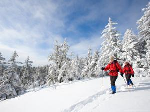 Winter Hiking on Mount Cardigan, Clark Trail, Canaan, New Hampshire, USA by Jerry & Marcy Monkman