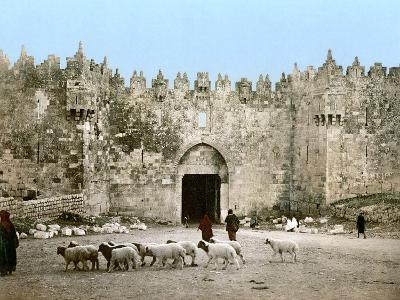 Jerusalem: Damascus Gate--Photographic Print