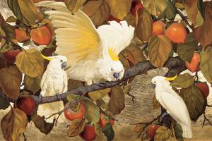 Persimmons and Cockatoos by Jesse Arms Botke