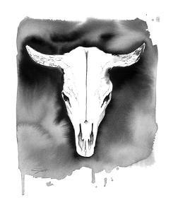 Cow Skull by Jessica Durrant