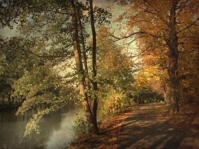 Artful Autumn