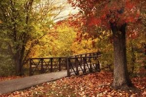 Autumn Footbridge by Jessica Jenney