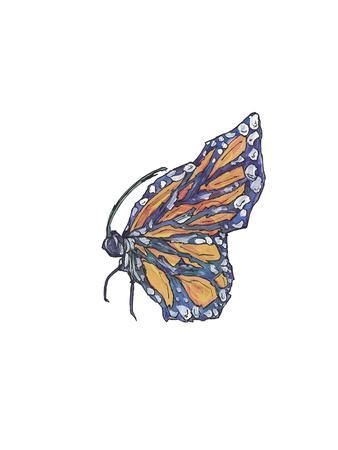 2018 Monarch Half