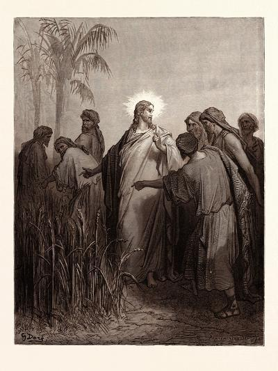 Jesus and His Disciples in the Corn Field-Gustave Dore-Giclee Print