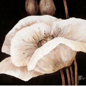 Amazing Poppies I by Jettie Roseboom