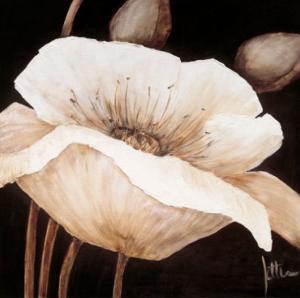 Amazing Poppies II by Jettie Roseboom