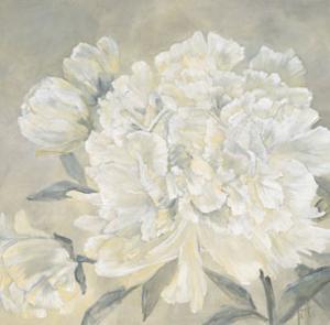 Paeonia I by Jettie Roseboom