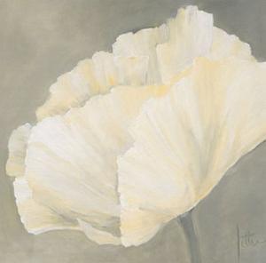 Poppy in White III by Jettie Roseboom