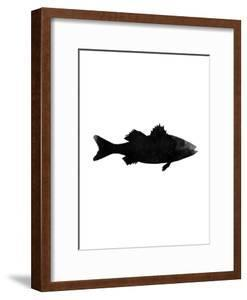 Black White Faded Sea Bass by Jetty Printables