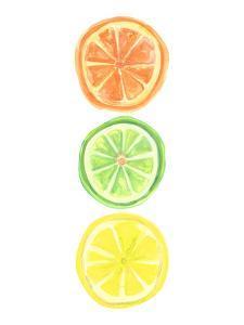 Citrus Trio by Jetty Printables