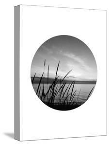Dune Grass Circle by Jetty Printables