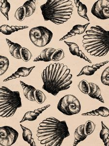 Illustrated Sea Shell Pattern by Jetty Printables