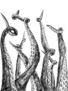 Octopus Tentacle Illustration by Jetty Printables