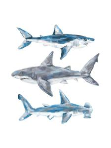 Painted Shark Trio 1 by Jetty Printables