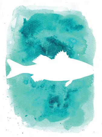 jetty-printables-watercolor-aqua-sea-bass