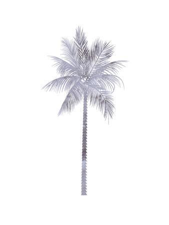 Watercolor Gray Palm