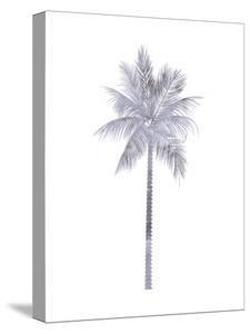 Watercolor Gray Palm by Jetty Printables