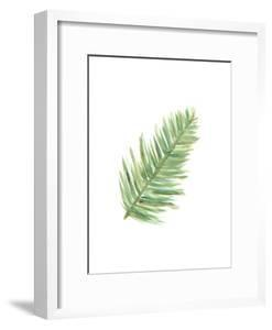 Watercolor Palm 2 by Jetty Printables
