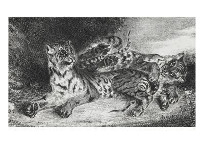 Jeune tigre jouant avec sa mère, lithographie 1er état-Eugene Delacroix-Giclee Print