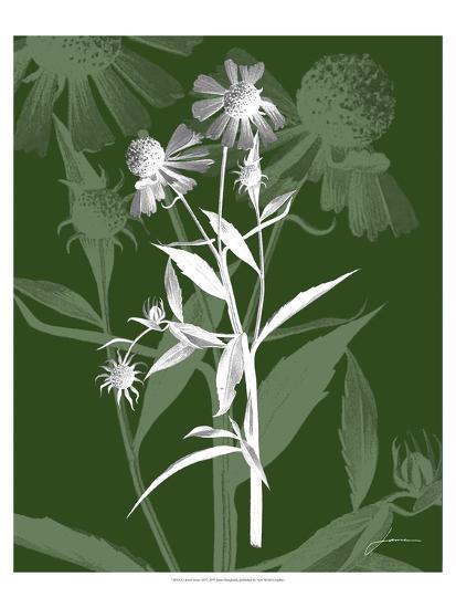 Jewel Stems III-James Burghardt-Art Print