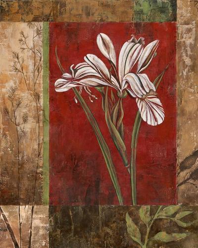 Jeweled Iris II-Maria Donovan-Art Print