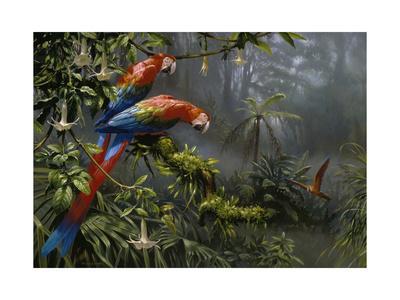 https://imgc.artprintimages.com/img/print/jewels-of-the-forest_u-l-q12unv10.jpg?p=0