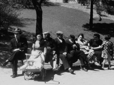 Jewish Families Sitting in the Sun During Visit to a Park--Photographic Print