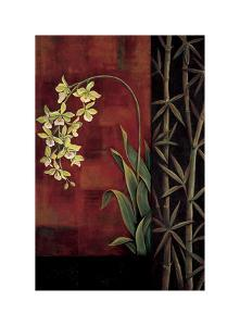 Green Orchid by Jill Deveraux
