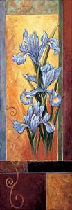 Iris by Jill Deveraux