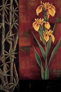 Yellow Iris by Jill Deveraux