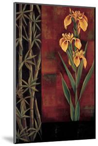 Yellow Iris by Jill Deveraux