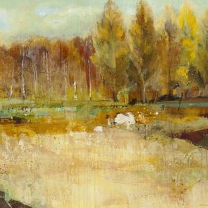 Field of Trees by Jill Martin