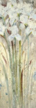 Gaze II by Jill Martin