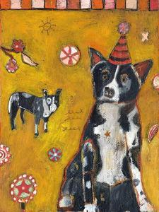 Border Collie by Jill Mayberg