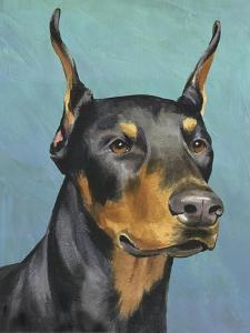 Dog Portrait, Dobie by Jill Sands