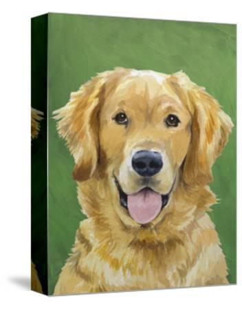 Dog Portrait, Golden