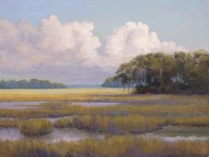 Big Sky Countryside by Jill Schultz McGannon