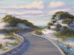 Boardwalk at The Beach by Jill Schultz McGannon