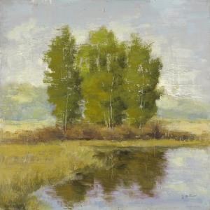 Country Reflections by Jill Schultz McGannon