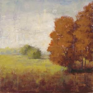 Country Vista by Jill Schultz McGannon
