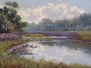 Countryside Hues by Jill Schultz McGannon