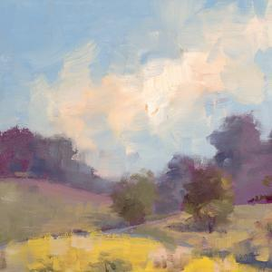 Plein Air Hill Side by Jill Schultz McGannon