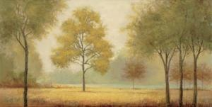 Tranquil Panorama by Jill Schultz McGannon
